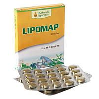 Липомап, липидопонижающий травяной препарат от фирмы Maharishi Ayurveda, Lipomap (40tab), фото 1