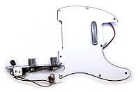 Paxphil #9112 Pickguard Panel Tele
