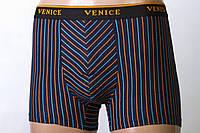 Трусы мужские Venice, полоса, хлопок 7952