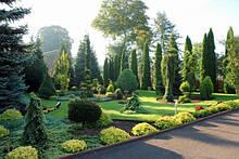 Ландшафтный дизайн и сады на крышах