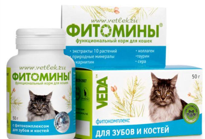 Витамины Фитомины для зубов и костей скелета кошек №100