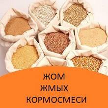 Корма зерновые, жом, жмых, кормосмеси