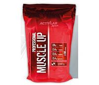 Muscle UP Professional 2 kg orange