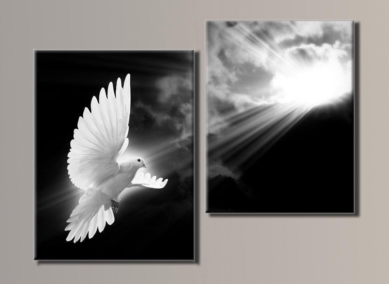 """""""Белый голубь"""" Модульная картина на холсте"""