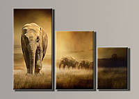 """""""Слоны в поле"""" Модульная картина на холсте"""