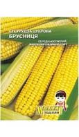 Семена Кукурудза сахарная Брусница  (профи)