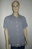 Стильная рубашка короткий рукав, фото 1