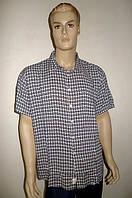 Сорочка мужская Eskola хлопок-бамбук короткий рукав, фото 1