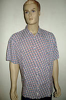 Сорочка мужская Eskola хлопок-бук-бамбук короткий рукав
