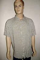 Сорочка мужская Eskola большой размер, фото 1