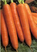 Морковь Канада   F1  1 гр