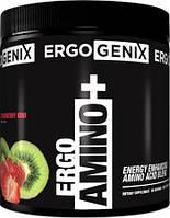 Аминокислотные комплексы ErgoGenix  Ergo Amino + 380 g