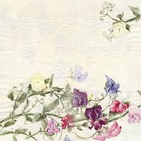 Коллекционная декупажная салфетка Цветущий горошек 1383