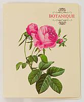 "Папка ""Botanique"" на 2 кольца B5/3cм L6189 арт.490635"