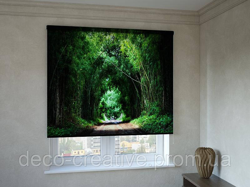 Рулонные шторы с фотопечатью арка деревьев в лесу