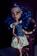 Кукла Монстер Хай Робекка Стим серии Я люблю аксессуары