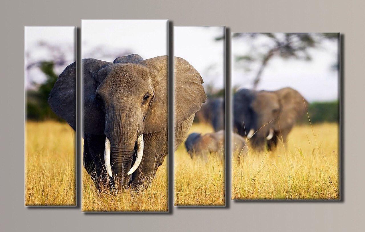 """Слоны в Сафари "" Модульная картина на холсте"