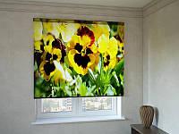 Рулонные шторы с фотопечатью анютины глазки желтые