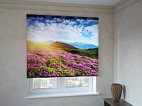 Рулонные шторы с фотопечатью поле цветов