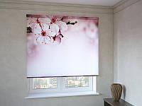 Рулонные шторы с фотопечатью цветущая ветка вишни