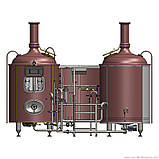Оборудование для производства пива DESTILA, фото 2
