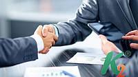 Создание бренда и управление репутацией (бизнес пакет)