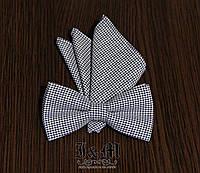 Галстук-бабочка + платок в пиджак (011104)