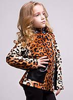 Детский пальто- ветровка Леопард со вставками кожи