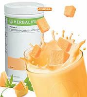 Протеиновый коктейль Формула1  Дыня Herbalife
