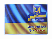 Обложка на паспорт Спасибо, что Украинец (винил) (Обложки на паспорт)