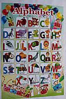 Азбука-плакат английский 640*450