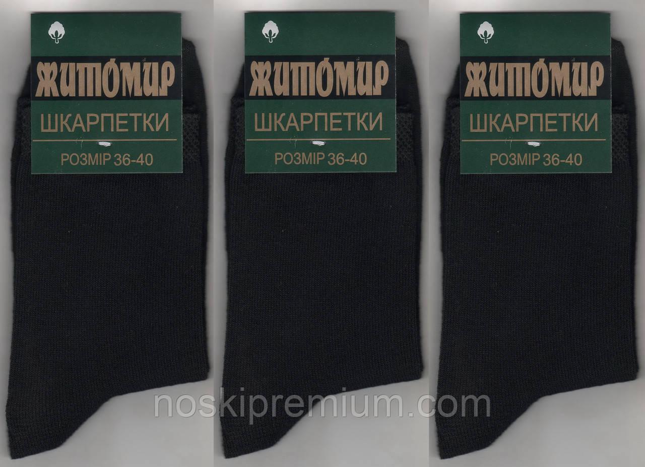 Носки женские демисезонные х/б Житомир, 36-40 размер