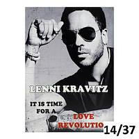 """Репродукция, постер """"Lenny Kravitz"""" (Ленни Кравиц) 30х40 см на холсте"""