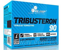 Olimp Labs Tribusteron 90 120 caps