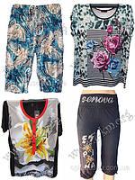Новые поспупления БАТАЛЬНЫХ футболок и бриджей
