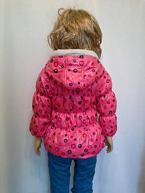 Куртка горошек, фото 2