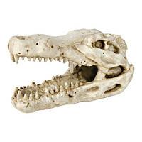 Декорация Trixie Череп крокодила, 14 см.