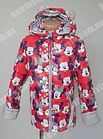 """Весенняя детская куртка """"Минни Маус"""" капюшон с ушками"""