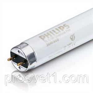 Лампа люмин. T8 36W/33 G13 PHILIPS теплый белый