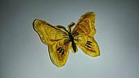 Термонаклейка бабочка желтая