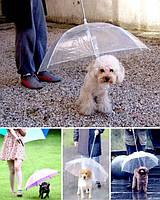 Зонтик для собак
