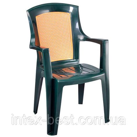 Пластиковое кресло Viola Wood, фото 2