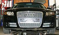 Декоративно-защитная сетка радиатора Audi A4 (B7) фальшрадиаторная решетка, бампер