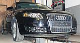 Декоративно-захисна сітка радіатора Audi A4 (B7) фальшрадіаторная решітка, бампер, фото 4