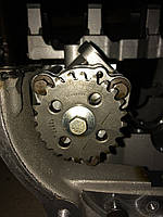 Шкив масляного насоса, 1355458, Ford C-Max (Форд Фокус)