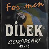 Носки мужские шелк без шва  Dilek ,белый р.43-46, фото 3