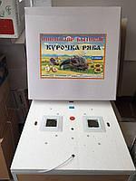 Инкубатор бытовой  Курочка Ряба 130 яиц цифр с переворотом(пластиковый корпус)