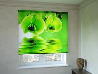 Рулонные шторы салатовая орхидея