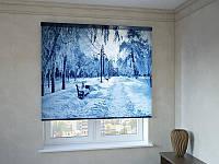 Рулонные шторы с фотопечатью зимний парк
