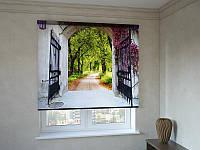 Рулонные шторы с фотопечатью вход в парк